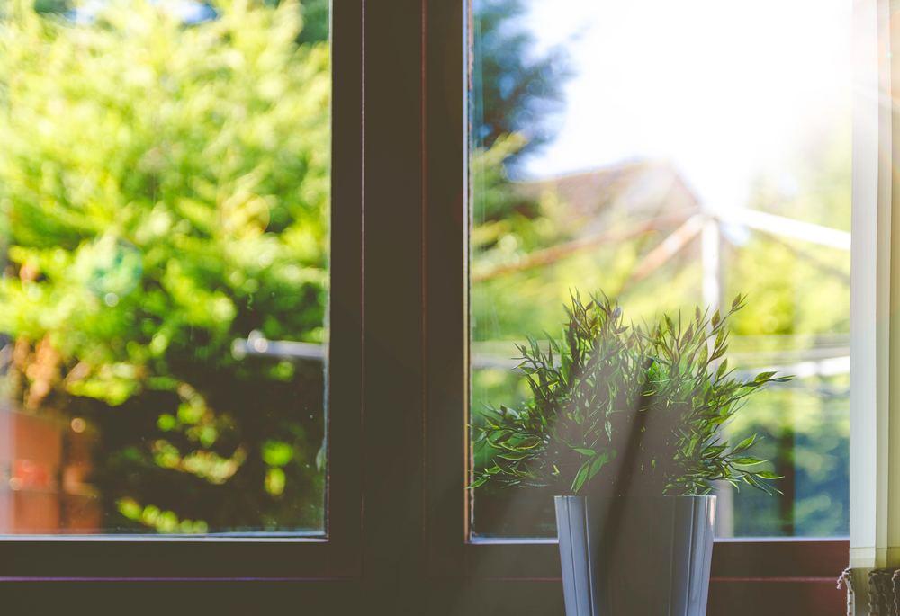 Kaffe, trädgård och nya fönster