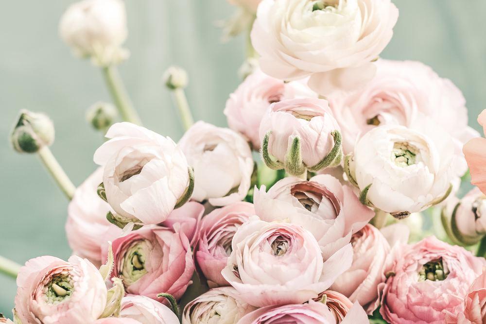 Säg det med blommor